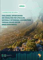 Challenges, opportunities, and modalities for upscaling nationally determined contributions through private sector green investments