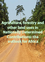 Agriculture, forestry and other land uses in Nationally Determined Contributions: the outlook for Africa