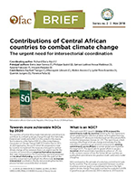 OFAC-Brief : Contributions of Central African countries to combat climate change: The urgent need for intersectorial coordination
