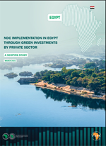 NDC implementation in Egypt through green investments by private sector – A Scoping Study