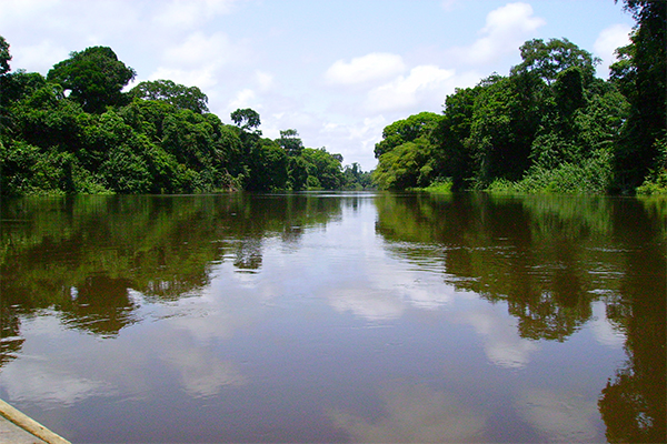Central African Regional Climate Action Transparency Hub